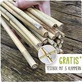 250 Stück Bambusstäbe - Tonkinstäbe 120 cm/10-12 mm
