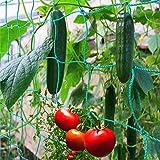 GardenGloss Ranknetz