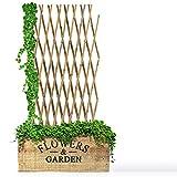 Floordirekt Bambus Rankgitter für Garten, Balkon & Terrasse | Individuell ausziehbar | Witterungsbeständig & langlebig | Bambusspalier (150 x 180 cm)
